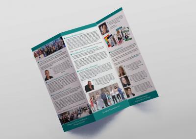 Stegela Trifold Brochure back
